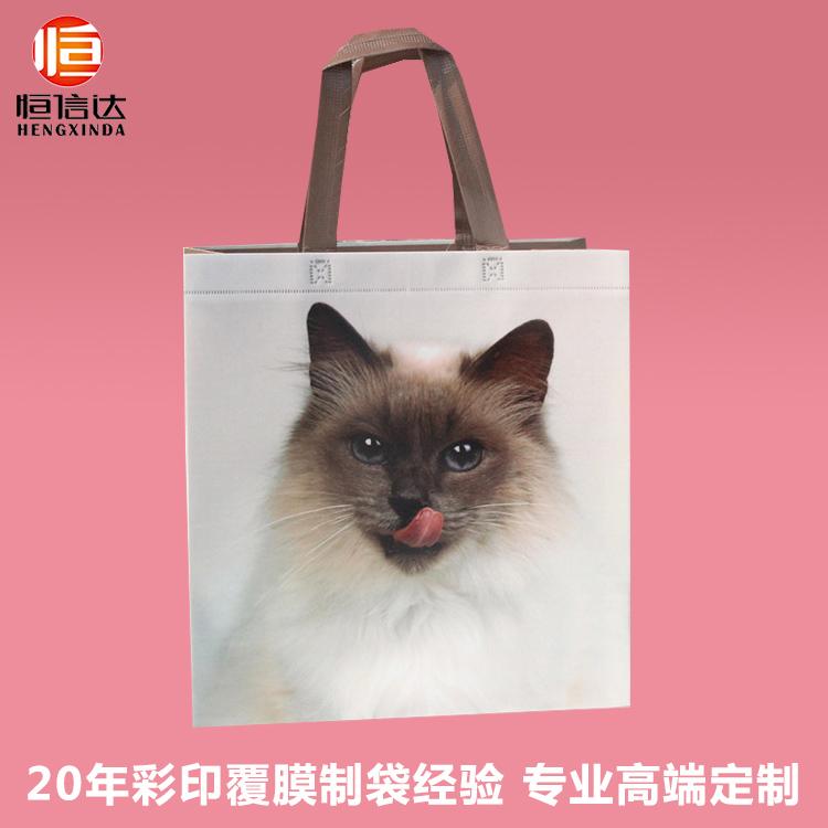 彩印覆膜一体成型立体手提袋购物袋